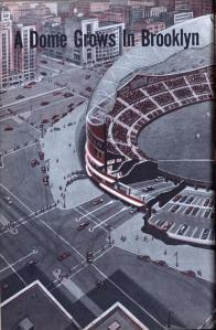 Fuller dome 1
